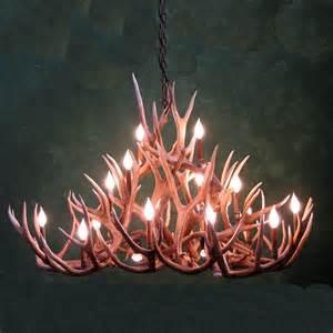 deer antler chandeliers oval bristlecone mule deer antler chandelier