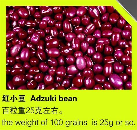 Adzuki Bean 100 Gr dried beans suppliers b2b marketplace bean products