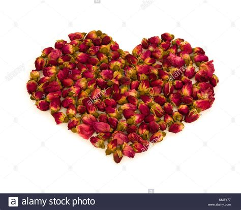 love heart made of flowers heart made of flowers stock photos heart made of flowers