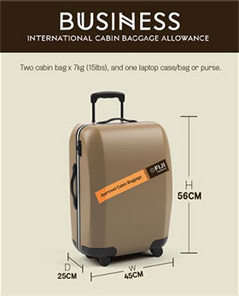 does united charge for bags what does united charge for baggage does united charge for