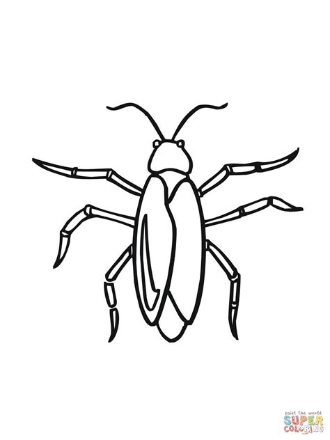 Cockroach Coloring Coloring Pages Cockroach Coloring Pages