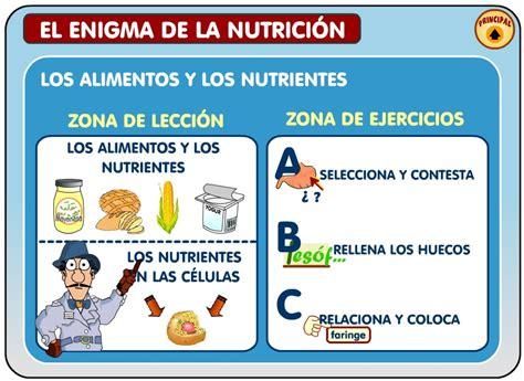 el enigma de la el enigma de la nutrici 243 n energ 237 a para crecer