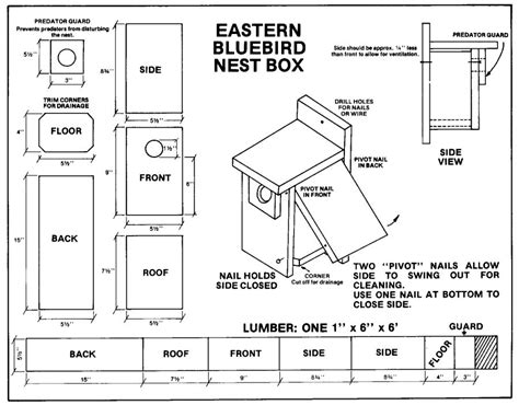 Bird House Plans For Hummingbirds Bluebird House Plans