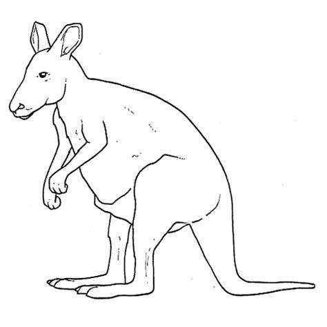 kangourou inglese test m 229 larbilder f 246 r barn midisegni it