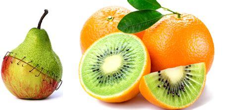 definicion de alimentos transgenicos alimentos transg 233 nicos en que consisten y riesgos de