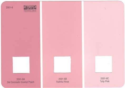 valspar pink colors a peace of bliss the pink