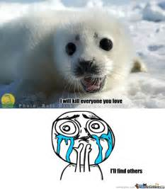 For Seal Meme - image gallery harp seal meme