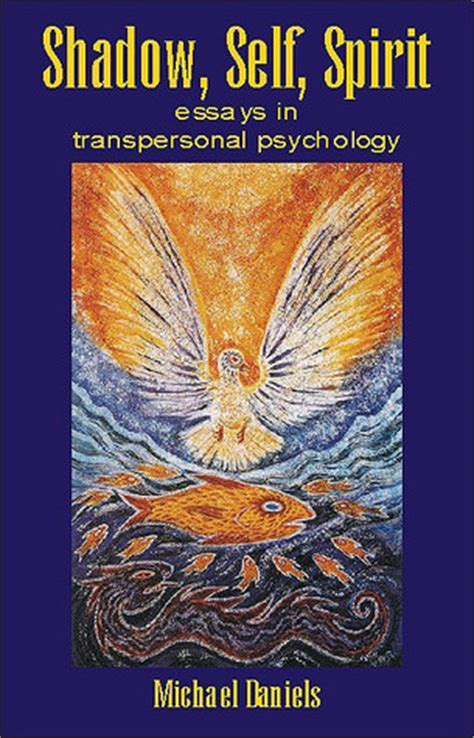participation and the mystery transpersonal essays in psychology education and religion books transpersonal psychology shelf