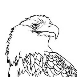 bald eagle with smooth feather coloring page netart