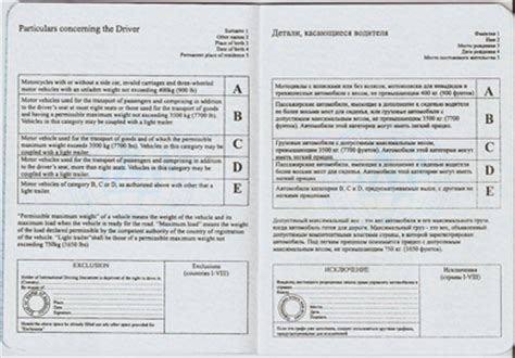 Sles Of International Driver License Driver License Translation Template