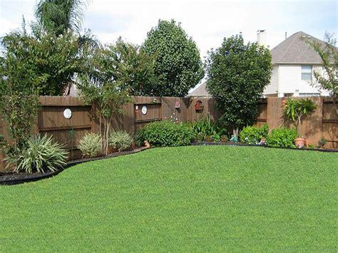 small backyard privacy ideas simple and easy backyard back yard trees along fence pinteres
