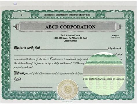 Stock Certificates Llc Certificates Share Certificates Goes Certificates Back Of Stock Certificate Template