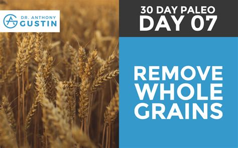 paleo with whole grains 30 day paleo day seven remove whole grains dr