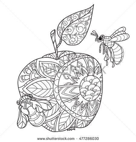 apple coloring pages for adults indian honey bee stock images royalty free images