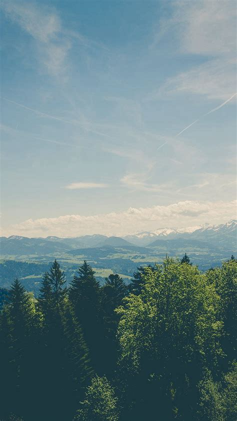 mountain valley pine canopy vintage iphone  hd wallpaper