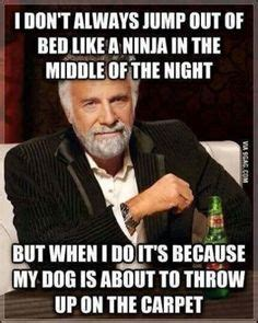 Funny Dos Equis Memes - 1000 images about dos equis man quotes on pinterest i