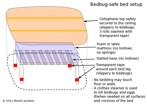 At What Temperature Do Bed Bugs Die by Peace And Bedbugs