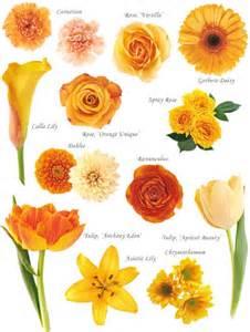 17 best ideas about flower names on pinterest list of flower names purple flower arrangements