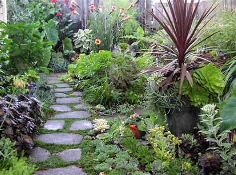 home gardening ideas rekomendasi cara menata tanaman hias di depan rumah
