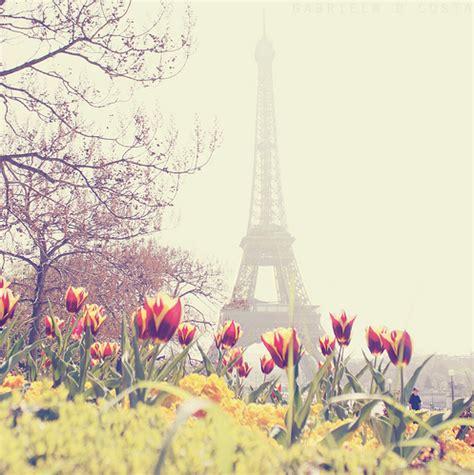 imagenes love paris beautiful eiffel tower flowers paris photography