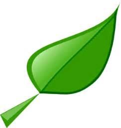 Green Leaf Outline Png by Gemm