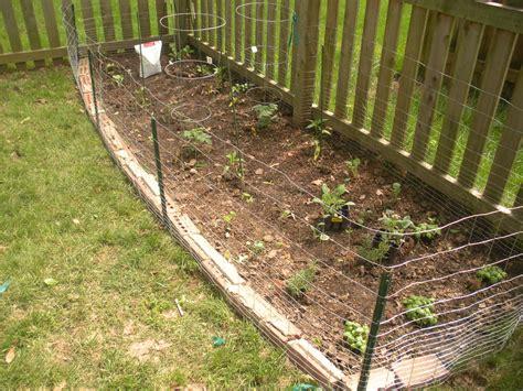 vegetable garden  fence hawk haven