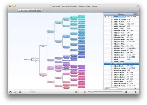 Template Family Tree For Mac | family tree template family tree templates for mac