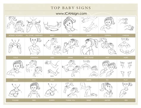 Baby Signs A Baby Speaking With Sign Language Board Book teaching your baby sign language baby sign language