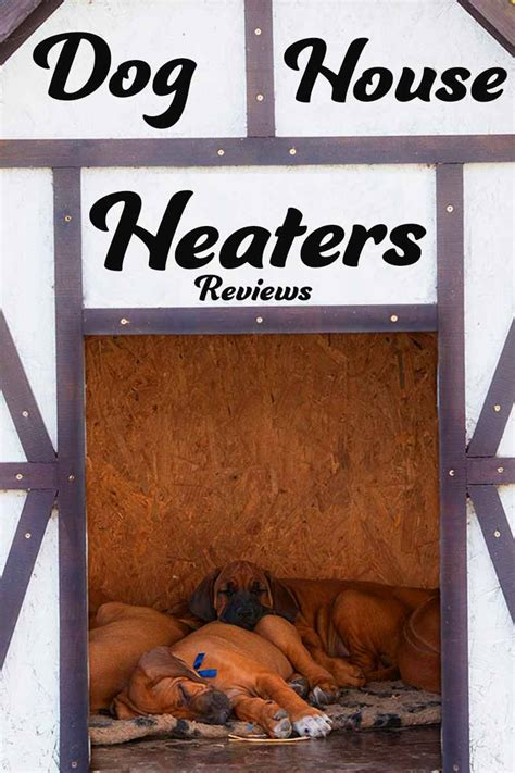 best way to heat a dog house guide to the best indoor and outdoor dog house heater options