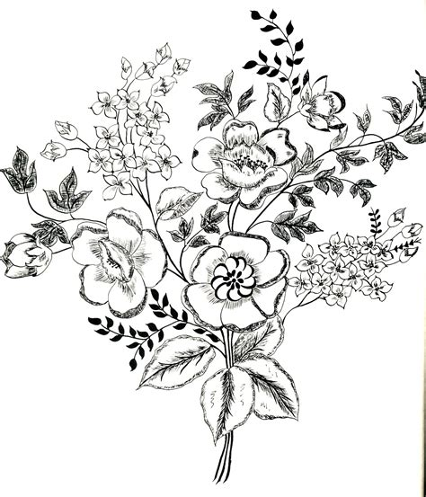 flower designs drawings pencil drawing collection