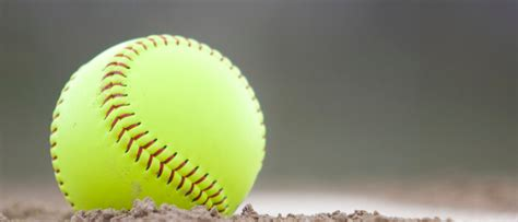 Softball Background Check Portage Parks Recreation Department Front Page News