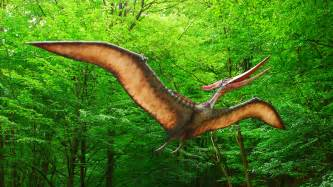 Pictures Of A File Pteranodon Dinopark Ko紂 Jpg Wikimedia Commons