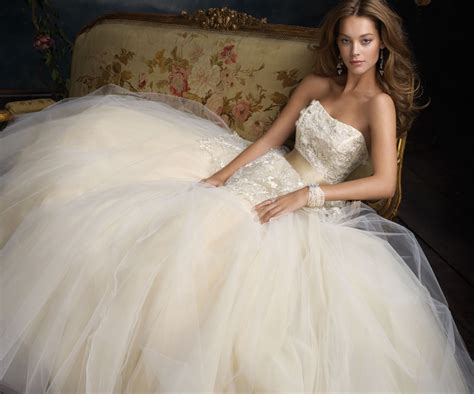 Tulle Wedding Dresses by Tulle Dress Dressed Up