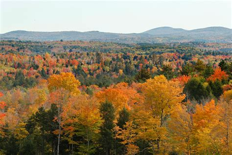 fall colors in maine central maine shows its fall colors portland press
