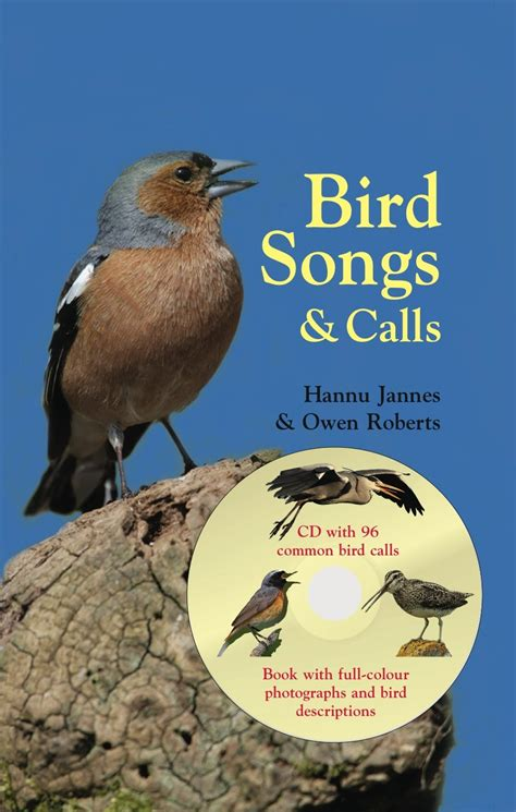birds songs and calls lynx edicions