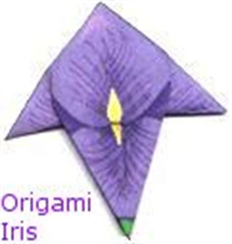 iris flower origami iris shobu origami