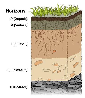 peat colour meaning soil fertility