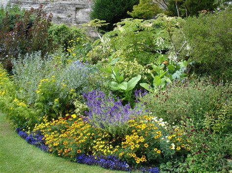 plants for cottage gardens plants for a cottage garden border