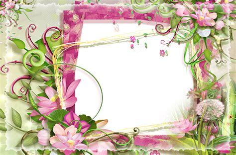 cornice con fiori cornici foto cornice con fiori rosa e verdi