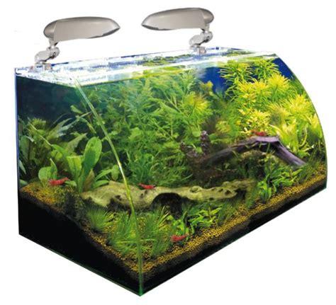 nano aquarium wave box vision 60 avec vitre avant courb 233 tout 233 quip 233 de 40l dimensions 60 x 15