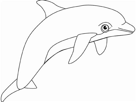 cartoon dolphin coloring page animal coloring pages dolphin free coloring sheet for