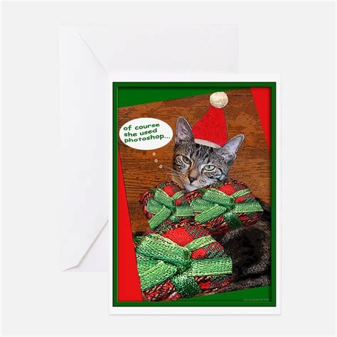 cards cat tabby cat greeting cards card ideas sayings designs