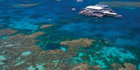 quicksilver boat port douglas quicksilver reef trip port douglas everything australia