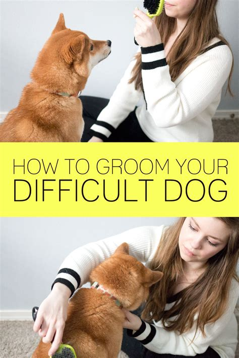 how to groom a how to groom a difficult hellorigby