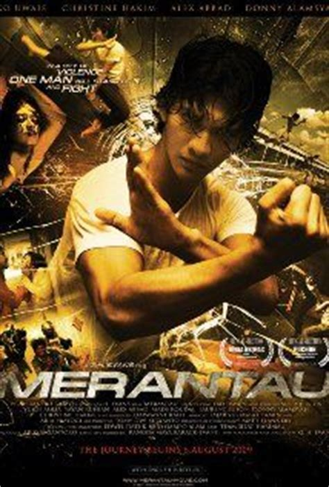 list film action indonesia my list of best asian movies on pinterest ip man han