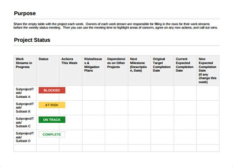 project status update template project template 19 free word pdf ppt documents