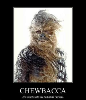 Fear Of A Bad Hairday No Need To Worry With This Hair Blower by Quotes About Chewbacca Quotesgram