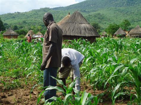 profitable farming businesses  nigeria