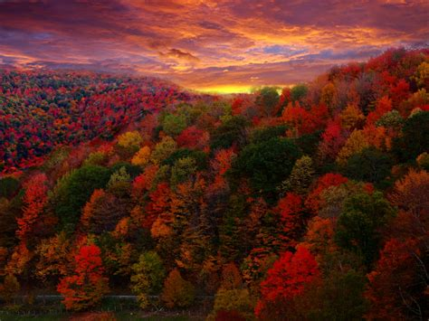 fall colors fall foliage photography flickr photo sharing