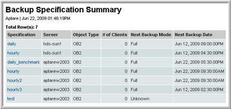 Hp Data Protector Backup Specification Summary Version 10 0 00 Data Backup Schedule Template